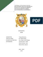 Monografía_Terapia1.docx