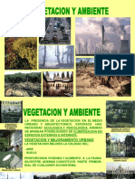Vegetacion y Ambiente