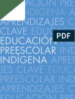 PreescolarIndigena.pdf
