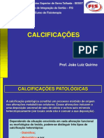 AULA 3 Calcificacoes Patologicas[1]