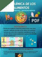 Bioquímica de Los Alimentos