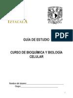 GUÍA DE ESTUDIO FESI BQ.pdf
