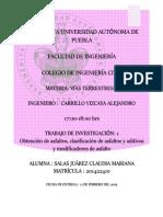 Proyecto de Investigacion 1. Salas Claudia.docx