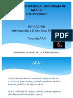 (3) Tipos de ARN