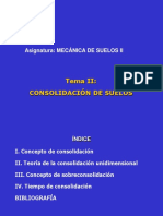 TEMA_II_CONSOLIDACION.pdf