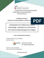 Rapport de Stage - Enseignement Du Portugais Langue Etrangere Création Et Conception d'Un Manuel Pedagogique Et Ludique