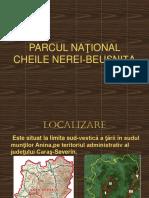 46397867 Parcul Naţional Cheile Nerei Beuşniţa