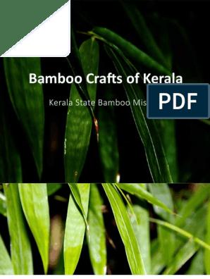 Bamboo Catalogue | Bamboo | Kerala