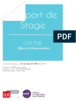 Raport_de_Stage_MMI.pdf