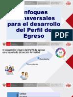 Enfoques Transversales Para El Desarrollo Del Perfil de Egreso. Material compartido por José Antonio Peñafiel Vásquez