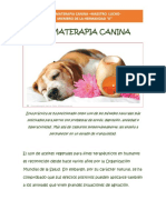 Aromaterapia Canina