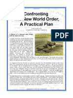 Confronting the New World Order a Practical Plan