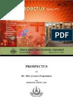 BS BBA, Prospectus,Spr-2019.pdf