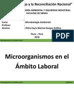Microoranismos en El Ámbito Laboral Diapo