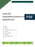 20180917_PAPER_GESTION_HSE.docx