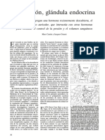 El Corazón, Glándula Endocrina.pdf