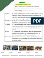 Ciências cap 3 vert e invert.docx