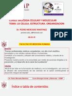 BCM CHI GuiaPracticas