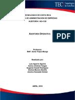 Auditoría Operativa - Trabajo Escrito