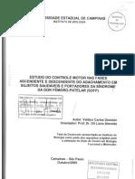 DionisioValdeciCarlos.pdf