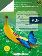 Inter Weichert Bananen Der PRS_Rewe Nord Esp