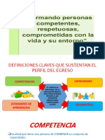 Perfil Egreso Rafael Vilca