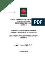 LINEAMIENTOS VARIANTE OCCIDENTAL DE SINCELEJO.pdf