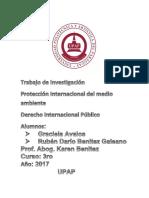 Unidad 2 Dip II- Proteccion Internacional Del Ambiente