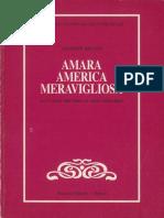 amara-america-meravigliosa--la-cronaca-delle-indie-tra-storia-e-letteratura.pdf