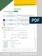 adaptacion_1_123167.pdf