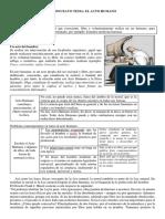 309367572 Preguntas 5 y 6 Seminario de Embriologia