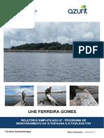 RELATÓRIO SIMPLIFICADO 07 - PROGRAMA DE.pdf