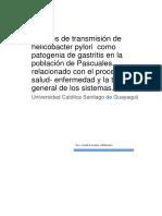 Fuentes de transmisión de helicobacter pylori  como patogenia de gastritis en la población de Pascuales, relacionado con el proceso salud- enfermedad y la teoría general de los sistemas..docx