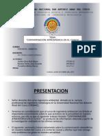 Seminario Contaminacion Ambiental Cusco