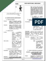 Módulo de Direito Constitucional André Kazukas Pc Online