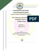 PRACTICA-2-SEMANA-3-UNIDAD-I-2019 (1).docx