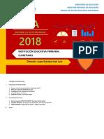 INFORME DE GESTIÓN ANUAL v1 Educ Primaria_2018.docx