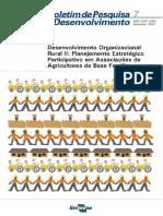 desenvolvimento organizacional rural II.pdf