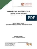 Lineamientos 2019.pdf