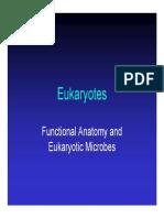 Kuliah 3 - Sel Eukariota