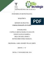 Cromatografia en Papel Reporte.docx