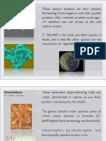 Bio-industry lecture 1b.pdf