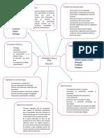 Organizador Plan 2017