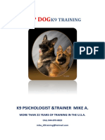 Manual TOP DOG corregido.docx
