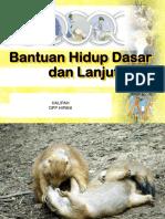 Bhd Dan Bhl - Tot Hipani 2018