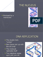 Gene Action ,Cell Division