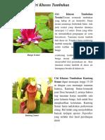 Ciri Bunga Teratai Kaktus Kantong Semar