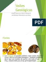 Fósiles Eras Geológicas Marzo EP