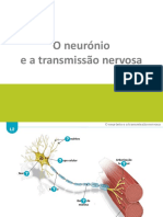 Neuronio_e_transmissao_do_impulso_nervoso