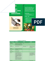 Leaflet Diet Kolesterol